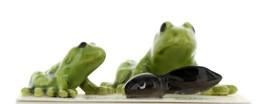 Hagen Renaker Miniature Frog Family Papa Baby & Tadpole 3 Piece Set image 1