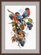 Cross Stitch Kit Hand Embroidery Animals Birds Bullfinches on the Blackb... - $32.00