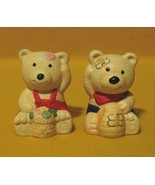 Teddy Bear Salt and Pepper Shakers with Flowers and Bees - $3.99