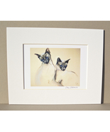 Siamese Cat Art Two Cats Signed Matted Print Solomon - $15.00