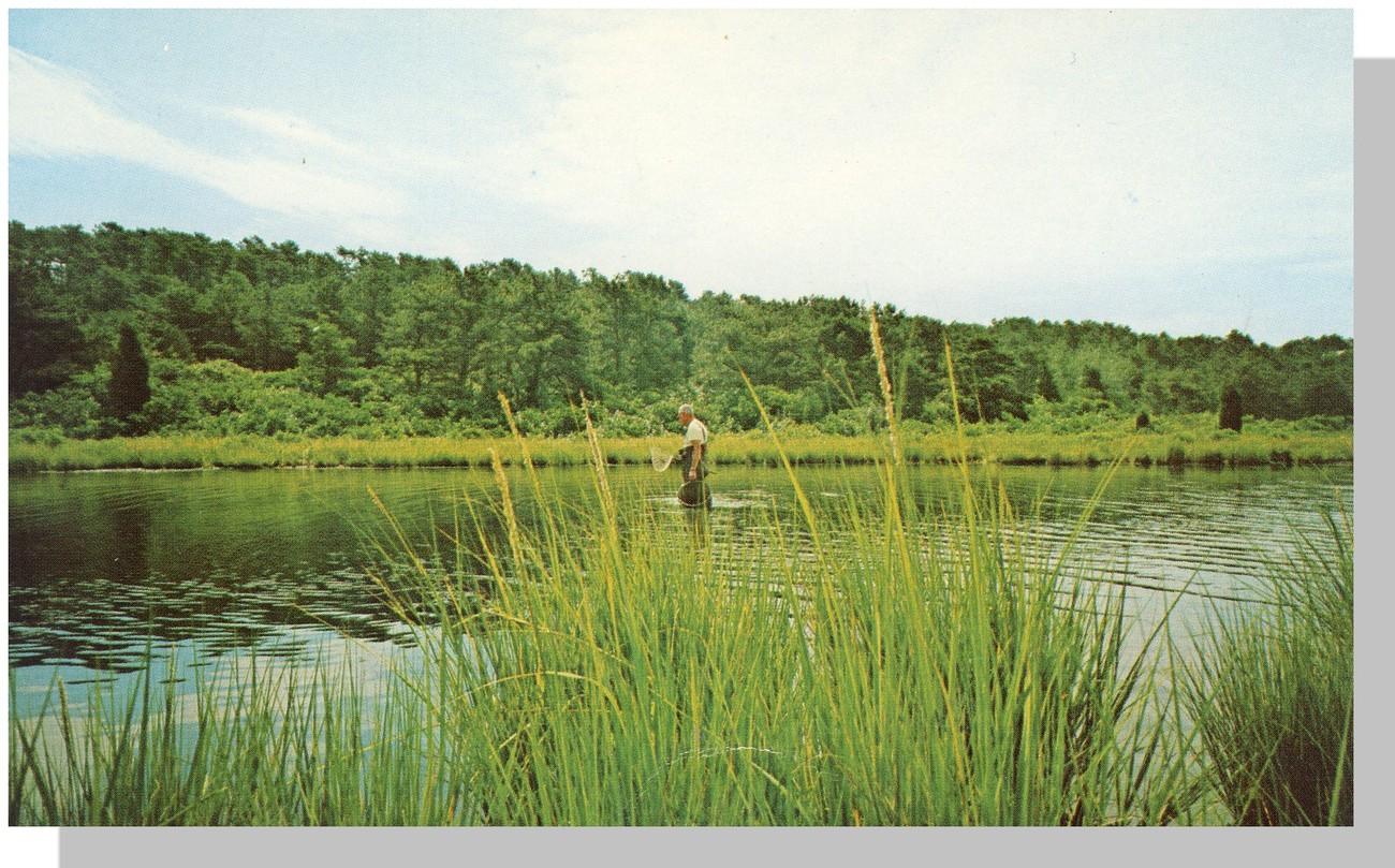 Cc fisherman
