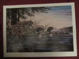 LOON wildlife art print MINNESOTA MEMORIES II - Dean Johnson - Unsigned - $14.52