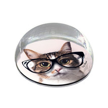 """Hipster Glasses Cat Photograph Funny Gift 2"""" Crystal Dome Magnet or Pape... - $15.99"""