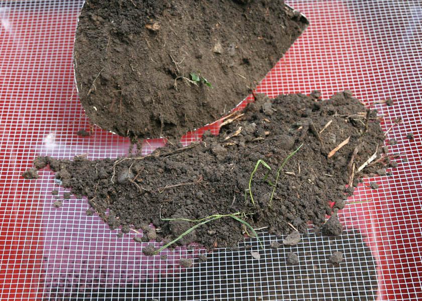 The Soil Sifter II