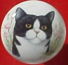 Cabinet Knobs  w/ Black & White Cat Monica Kitten - $5.25
