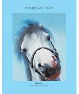 Ponies at Play : 20 Notecards and Envelopes : New Boxed @ - $17.33