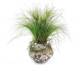 Planter JOHN-RICHARD Allium Grass Vase New JR-1774 FREE - $1,653.71 CAD