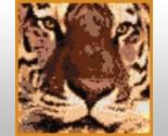 Tigerface thumb155 crop