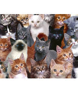 Cat Collection Mousepad - $12.95