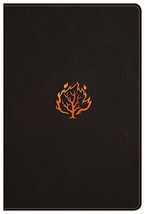 I Am Bible, Black LeatherTouch, Indexed Kirby, Terry and Holman Bible Staff - $49.99