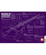 Mandolin Anatomy And Mechanics Wall Chart/Mando... - $8.99