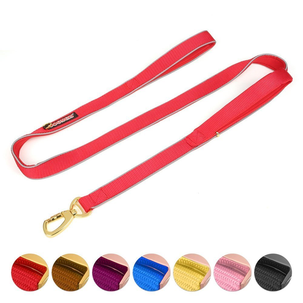 Double Handle Dog Leash Dual Handle Heavy Duty Soft Padded Reflective Nylon Dog