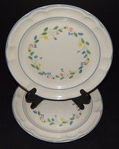 2 Floral Expressions Mexican Hand Decorated Stoneware Dinner Plates Blue... - $29.69