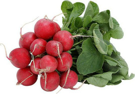SHIPPED FROM US 770 Early Scarlet Globe Radish Sativus Vegetable Seeds, ... - $13.00
