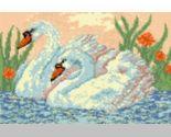 Swans thumb155 crop