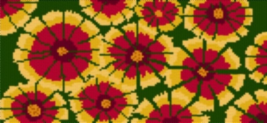 Indianblanketwildflower