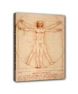 Vitruvian Man Leonardo Da Vinci Canvas Art Print 11 by 14 Inches Over Wo... - $37.99