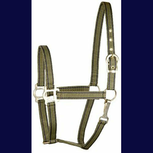 Pony Nylon Halter Two Tone Classic NEW!  Olive and Navy