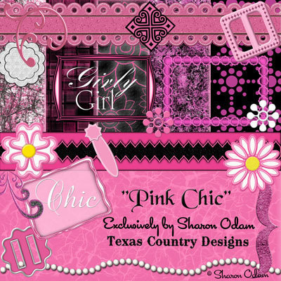Pink chic kit web