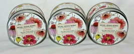 3 Pack Michel Design Works Posies Soy Wax Travel Candle Floral Spice Scent - $27.47