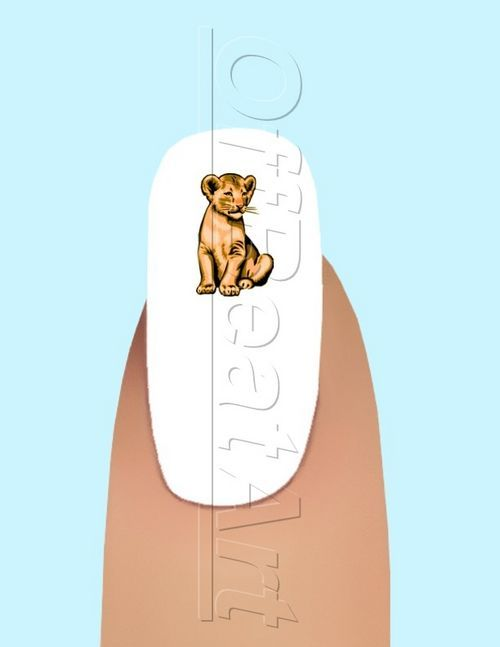 24 Full Body Lion Cub Waterslide Nail Art Decals #127