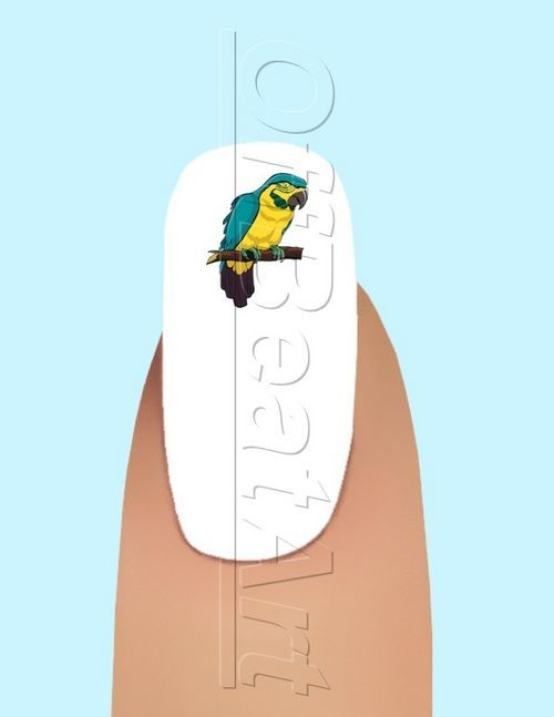 24 YellowandGreen Parrot Waterslide Nail Art Decal #173