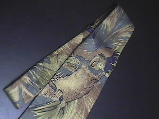 Ermenegildo Zegna Silk Neck Tie Tropical and Parrot