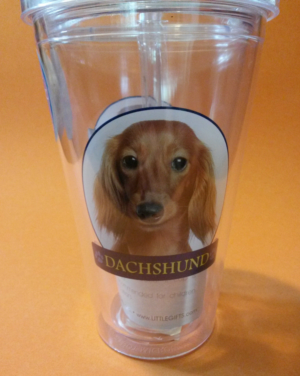 DACHSHUND CUP Dog 16 oz Insulated Plastic Pint Cup with Straw NEW