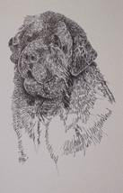 Newfoundland Dog Art Portrait Print #64 Kline adds dog name free. WORD D... - $49.45