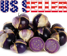 50+ ORGANICALLY GROWN Purple Tomatillo Seeds Heirloom NON-GMO Sweet Rare... - $4.25