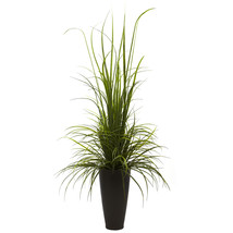 "64"" River Grass w/Planter (Indoor/Outdoor) - $152.65"