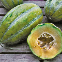 20 Seeds Bidwell Casaba Melon Cantaloupe Large HUGE Heirloom Massive 16 ... - $2.39