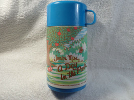 VTG Aladdin Junior Miss A Day In The Park Plastic Lunch box Thermos 1974 Rare - $34.65