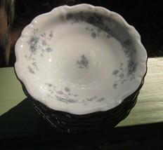 JOHN HAVILAND BAVARIA BLUE GARLAND PLATINUM RIM FRUIT DESSERT BOWL Lot o... - $18.99