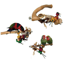 A&E Cage Assorted Java Wood Branch Bird Toy Medium 644472018448 - £25.80 GBP
