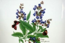 """Royal Worcester 2007 Worcester Herbs Sage 11"""" Baker Botanical Line image 2"""