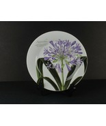 """Baum Brothers Agapanthus Plate Lily of the Nile African Lily Blue Lily 8"""" - $21.78"""
