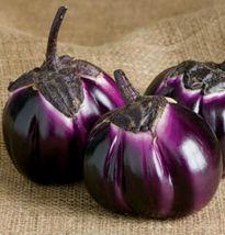 Heirloom 600 Seeds Purple Barbarella Eggplant Solanum Vegetable - $9.99