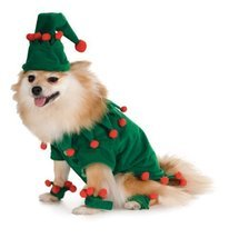 Elf Pet Costume, Large - €8,32 EUR