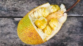 "Yellow Jackfruit Tropical Flower Fruit Tree Seedlings 2 8-10""  - $29.99"