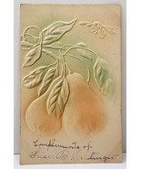 Embossed Pears on A Branch Airbrushed Fruit Greeting New Holland Pa Post... - $4.95