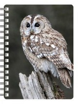 Tawny Owl 3D Notebook,  great birthday gift - $5.18