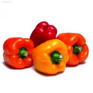 1FAF CD7F 100PCS/Bag Vegetable Garden Rainbow Pepper Seeds Hot Chili Seeds Food