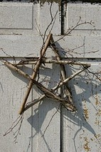 The Naturals Primitive Birch Wild Twig Star Wreath - $29.60