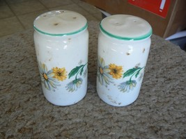 Tabletops Unlimited Daisy Garden set of salt and pepper shakers 1 set available - $8.86