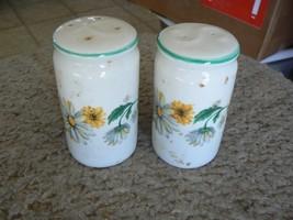 Tabletops Unlimited Daisy Garden set of salt and pepper shakers 1 set av... - $8.86