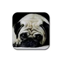 Cute Sleepy Shar Pei Puppy Puppies Dogs Pet Ani... - $1.99