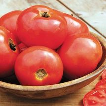 SHIP From US, 25 Seeds Iron Lady F1 Hybrid Tomato, DIY Healthy Vegetable AM - $24.99