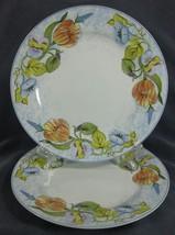 American Atelier Floral Garden 5088 Dinner Plates Lot of 2 Porcelain Blue Rim - $44.95