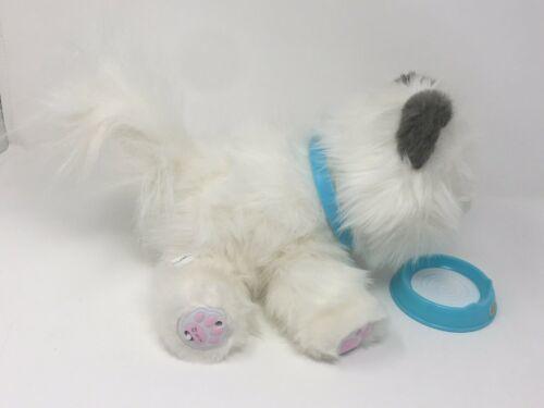Cuddles My Dream Kitten Little Live Pet Cat Interactive Toy Plush White Grey